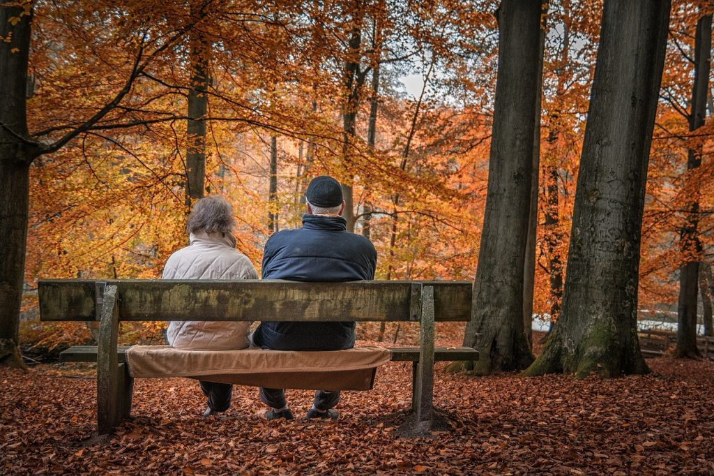 state pension forecast